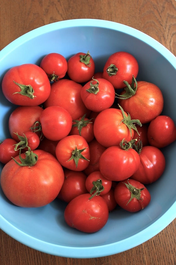 Tomatoes-bowl
